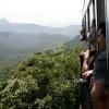 Tren Serra Verde - De Curitiba a Paranagua - Brasil